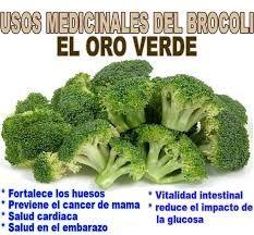 Resultado de imagen para imagenes de plantas medicinales y sus nombres y para que sirven