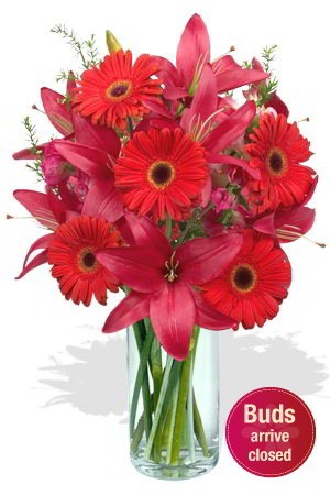 Breathless    If you really wish to take someone's breath away, this fabulous bouquet is the choice for you. The striking red colour of the Gerberas and Lilies, will make anyone gasp with delight.