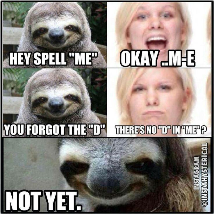 Dirty sloth humor. - juntoslubricants.com