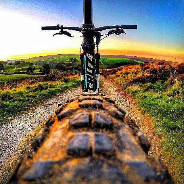 Bikes bridges Beer : Photo