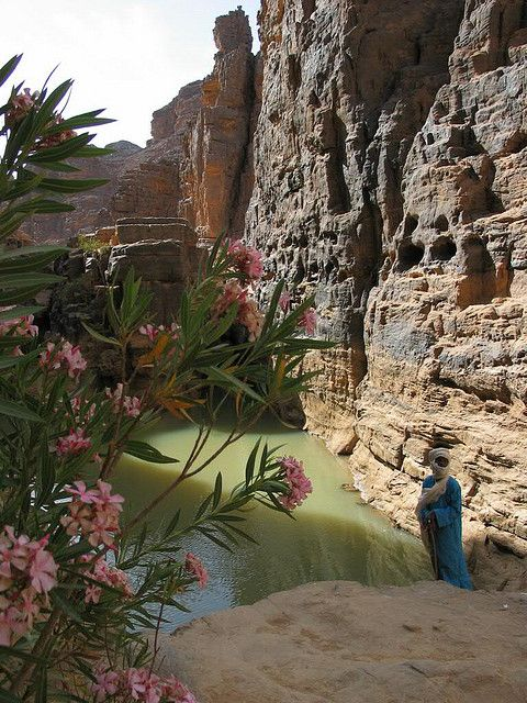 A tuareg near a small oasis in Tassili N'Ajjer, Algeria