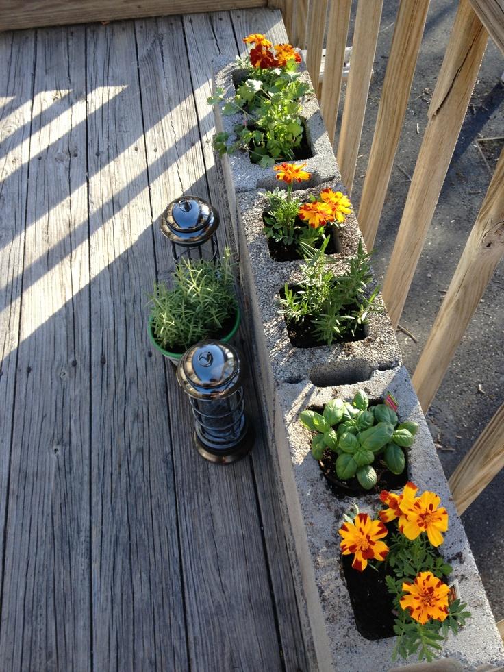 Pin by Donnia Anastasia on Gardens... | Patio herb garden ...