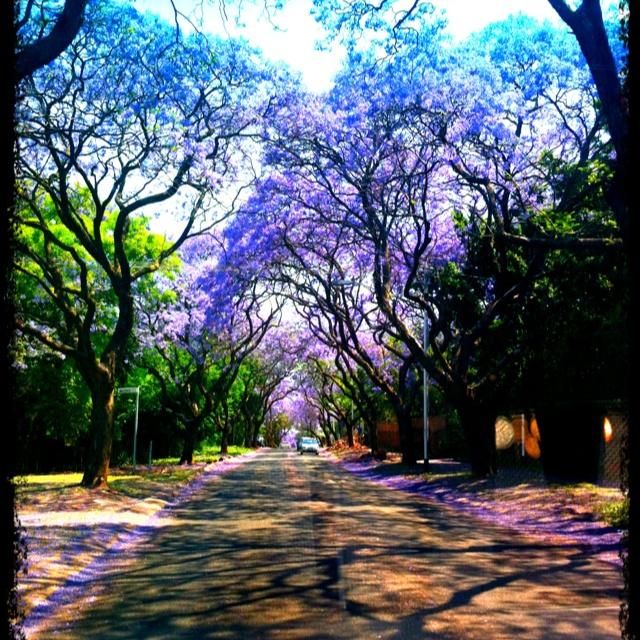 EksamenTyd vi Tukkies Studente #University of Pretoria
