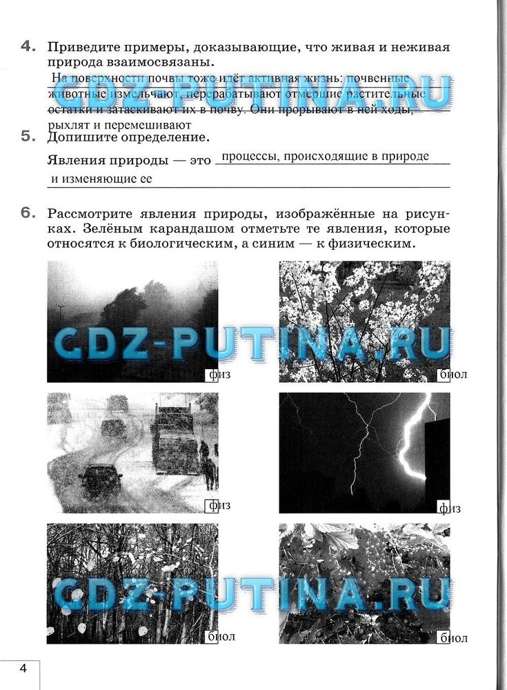 Гдз онлайн по русскому языку 6 класс львова и львов 3 часть