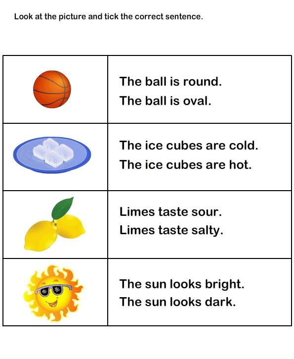 Describing Words Worksheet16