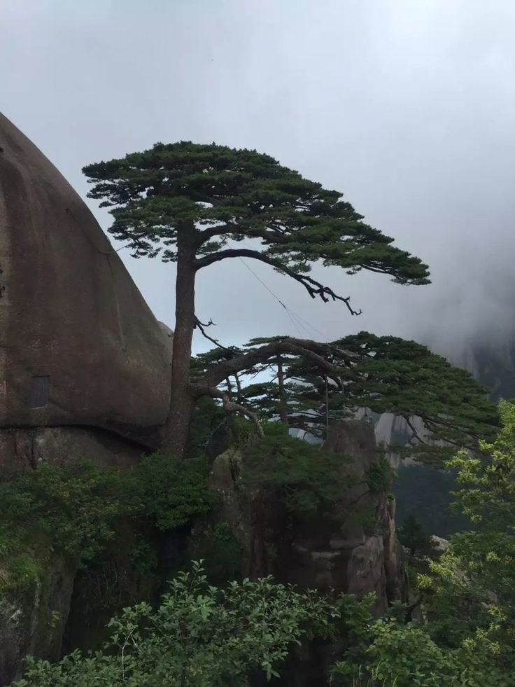 Huangshan is located in Huangshan City, Anhui Province, it is one of China's famous scenic