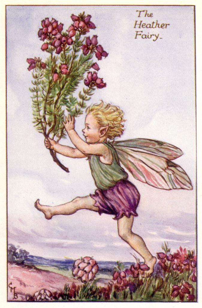 Flower Fairies - Cicely Mary Barker - 1925