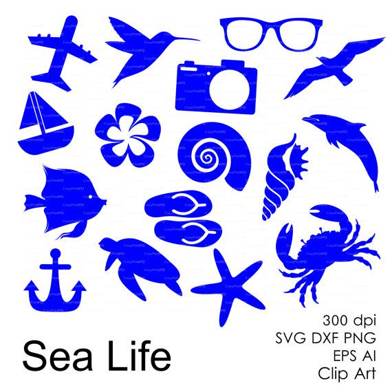 Ocean Sea Eps Svg Dxf Ai Png Dolphin Shell Crab