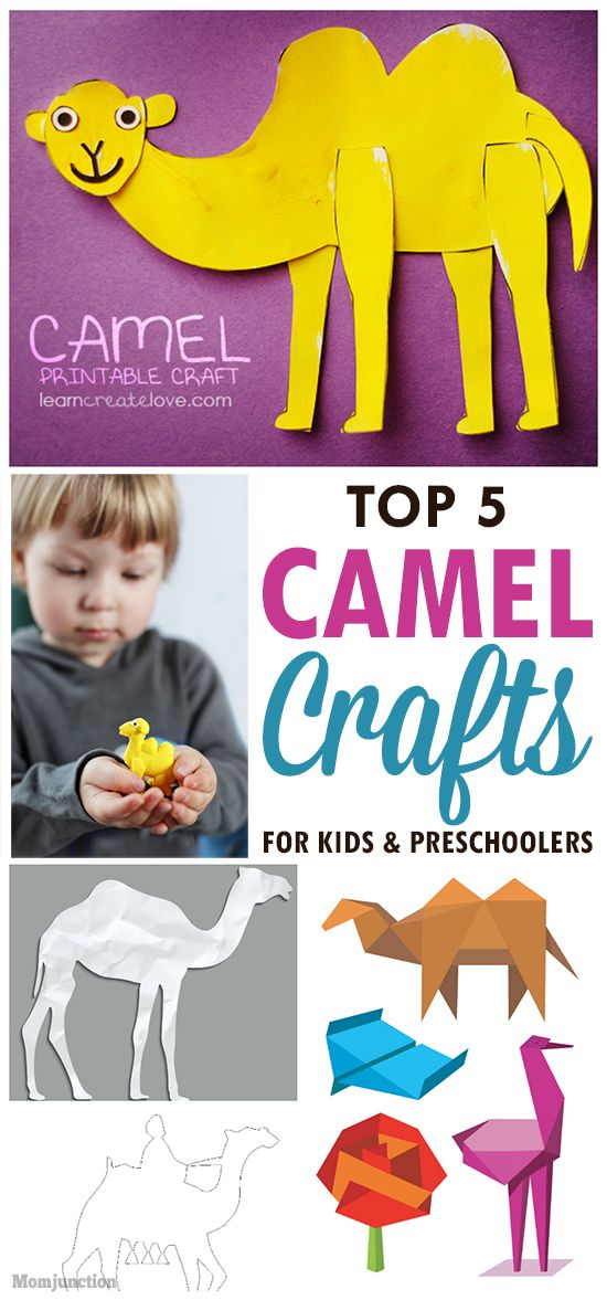 Top 5 Camel Crafts For Kids & Preschoolers