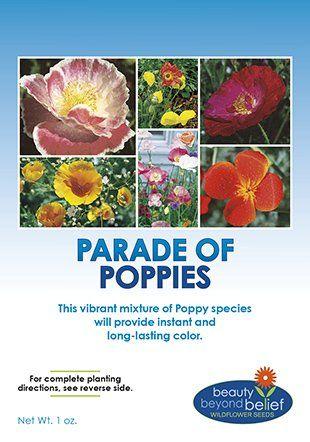 Parade Of Poppy Wildflower Seeds Bulk 8 Bonus Gardening Ebooks