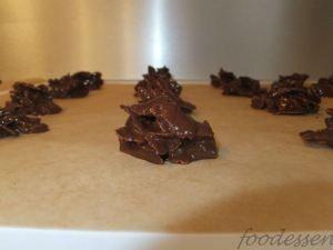 Chocolate Crunchies | foodessen.com