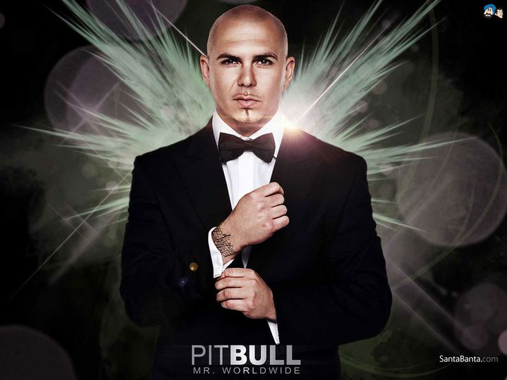 Armando Pérez (born January 15, 1981), better known by his stage name Pitbull, is an American rapper, songwriter, and record producer.