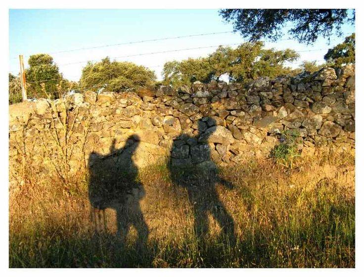 Pilgrim shadows