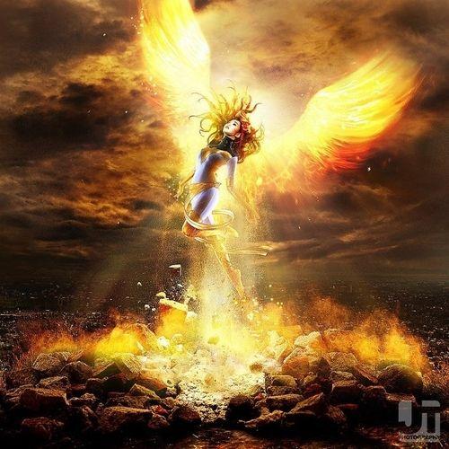 Falling Skies Wallpaper Hd 74 Best Phoenix Rising Images On Pinterest Phoenix Bird