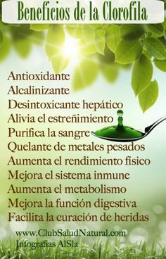 Beneficios de la Clorofila - Club Salud Natural