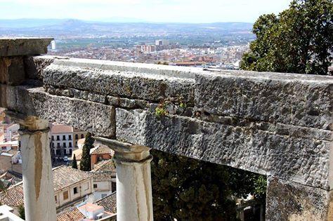 ¡La vegetación intenta hacerse paso entre las piedras! Un saludo desde el Patrio de Psiquis. https://www.youtube.com/watch?v=c7H9fA8y5FE #FundacionRodriguezAcosta #Granada