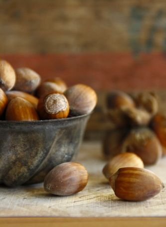 Acorns have always been one of my very favourite signs of autumn. #acorns #fall #autumn