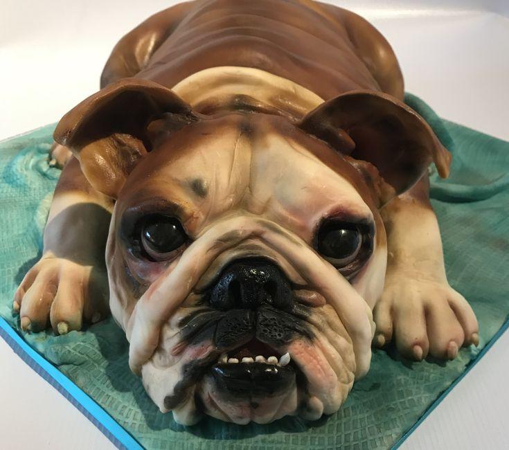 British bulldog cake by louise at cake oddity bulldog