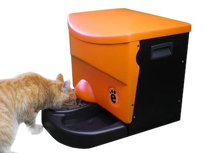 Dispenser (distributore automatico) di cibo ed acqua  per gatti domestici