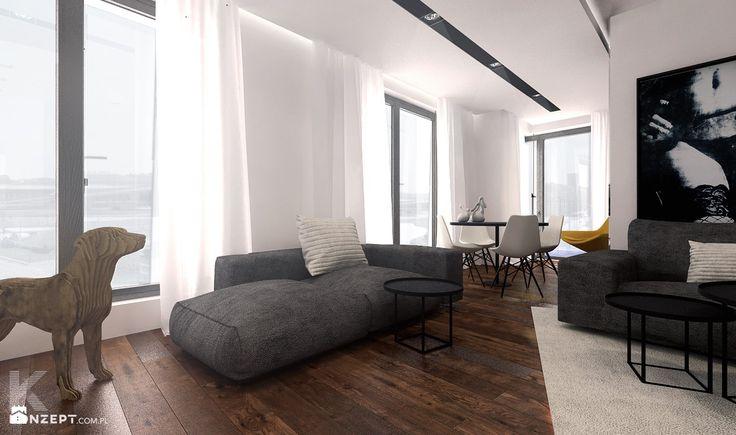 Salon styl Minimalistyczny - zdjęcie od KONZEPT Architekci - Salon - Styl Minimalistyczny - KONZEPT Architekci