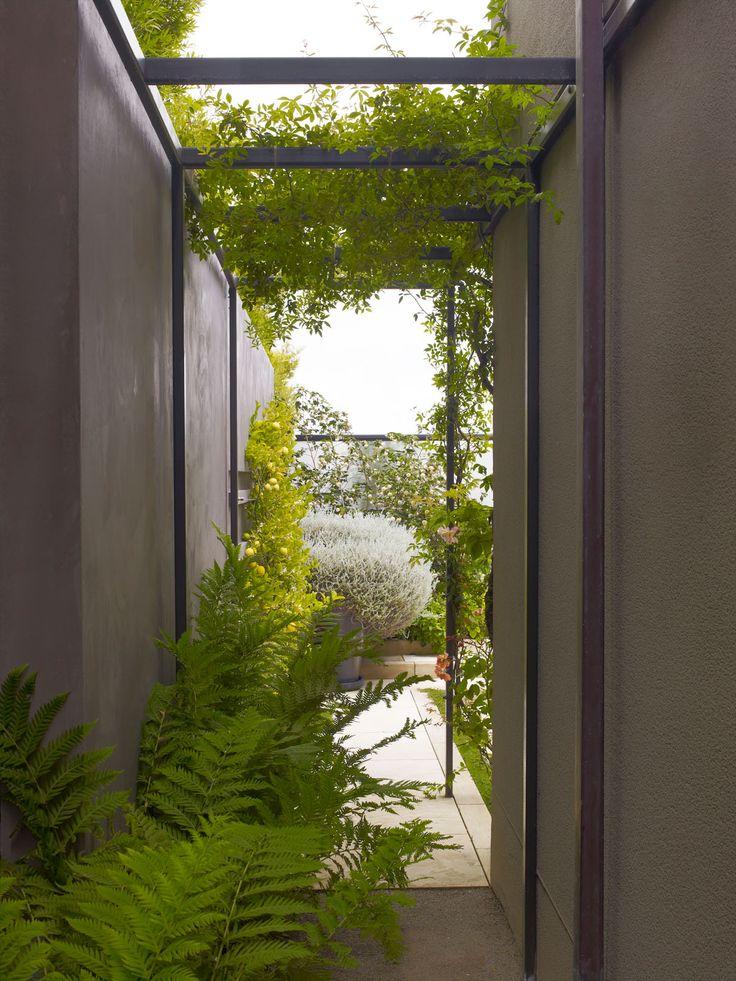 69 best images about lutsko associates on pinterest for Landscape design associates
