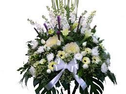 Buy Flowers Online,  http://articlestwo.appspot.com/article/how-to-order-flowers  Order Flowers,Order Flowers Online,Buy Flowers Online,Buy Flowers,Ordering Flowers