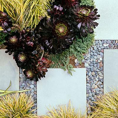 How To Design A Beachy Garden