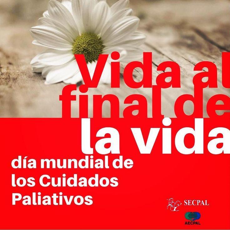#DíaMundialDeLosCuidadosPaliativos Vida al final de la vida!