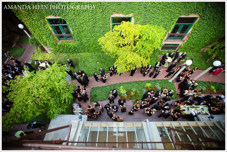 Ivy Room at Tree Studios Reception | Chicago Wedding Venues
