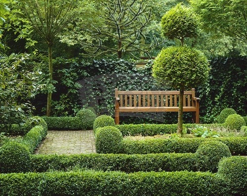 Round and rectangle hedges