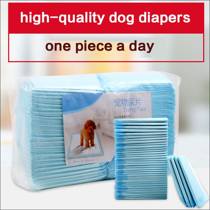 Indoor Toilet Training Pads