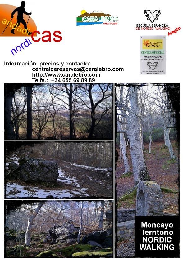 Ruta por el Hayedo de Peñarroya en el Parque Natural del Moncayo