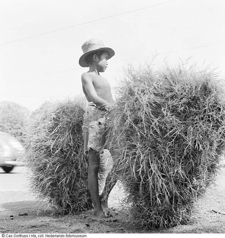 Seorang anak laki-laki membawa hasil panen, 1947. Fotografer Cas Oorthuys.