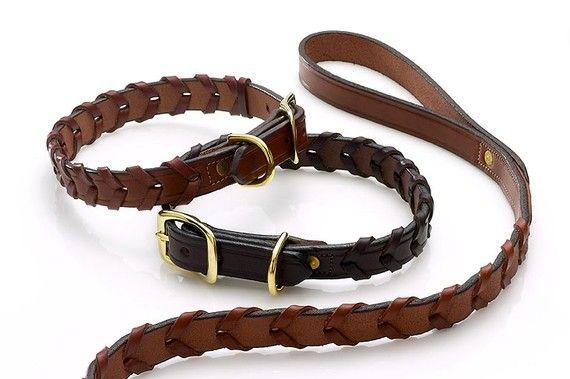 Devonhill dog Collar