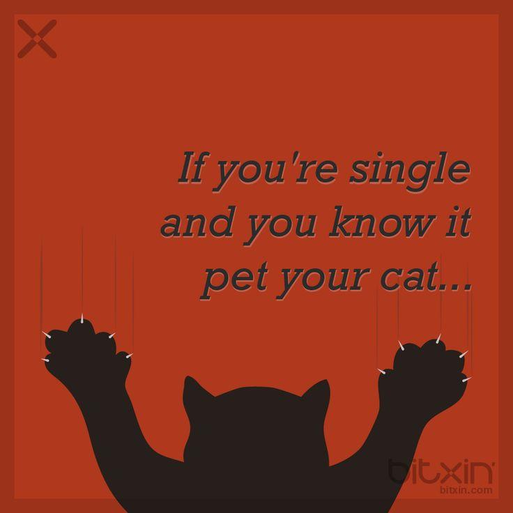 Alone on Valentine's? - bitxin' #valentine's #valentinesday #valentines #valentine #card #meme