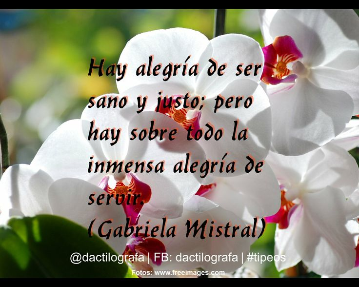 Frases De Alegria: 40 Best Gabriela Mistral Images On Pinterest