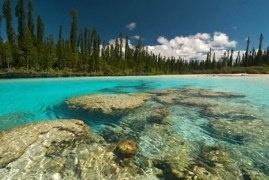 Piscine naturelle, île des Pins #3