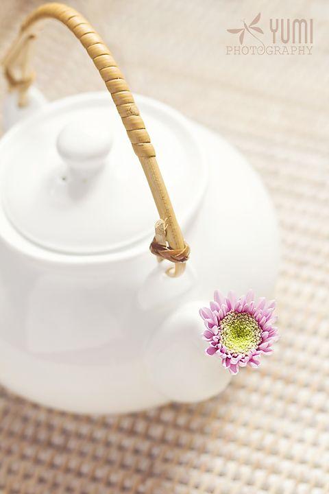 Teapot Flower - Yumi Photography - ♥ www.facebook.com/yumiphotoart ♥