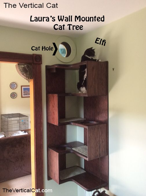 The Vertical Cat   Laurau0027s Wall Mounted Cat Tree
