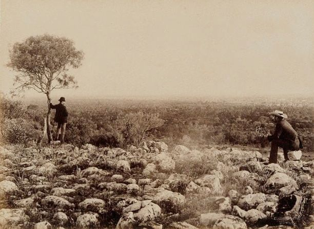 Dunlop range near Louth, NSW 1886, Charles Bayliss.