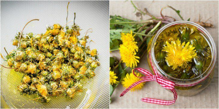 How To Make Dandelion Oil & Ways to Use It