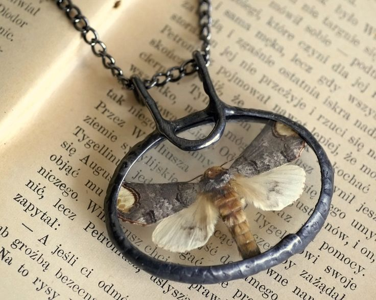 moth necklace, night butterfly, terrarium necklace, handmade by pentaxPL on Etsy