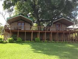Sabie River Bush Lodge luxury tents on stilts.