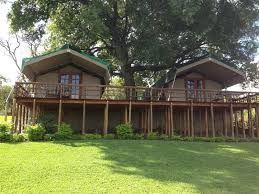 Sabie River Bush Lodge luxury tents on stilts.