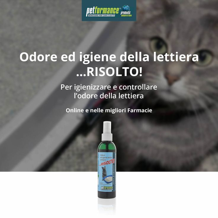 Odore ed igiene della lettiera …RISOLTO! è l'innovativo prodotto spray che aiuta ad igienizzare ed a controllare l'odore della lettiera.