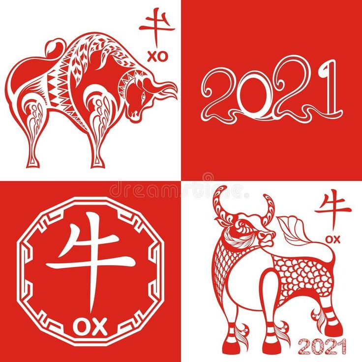 Design of Happy chinese new year 2021, year of ox. Chinese