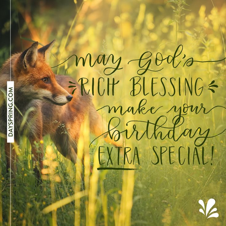Happy Birthday Wishes Nature ~ Best birthday greetings images on pinterest wishes birthdays and happy