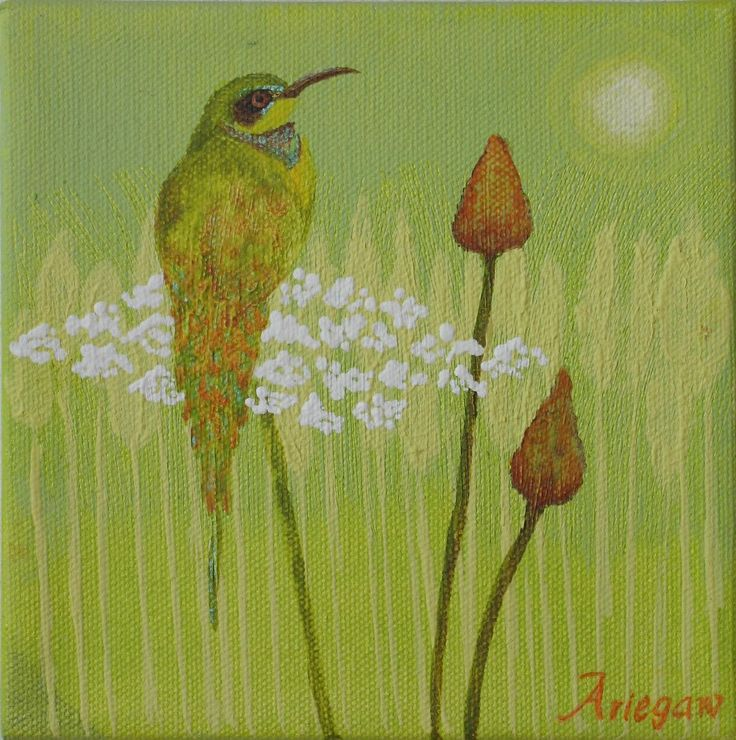 Original Bee Catcher Bird And Wild Flower Acrylic Painting 6 by 6 inches on stretched canvas by StudioAriegaw on Etsy
