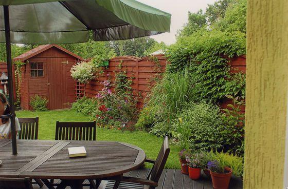 drzewa ogrodowe na mały ogród - Szukaj w Google