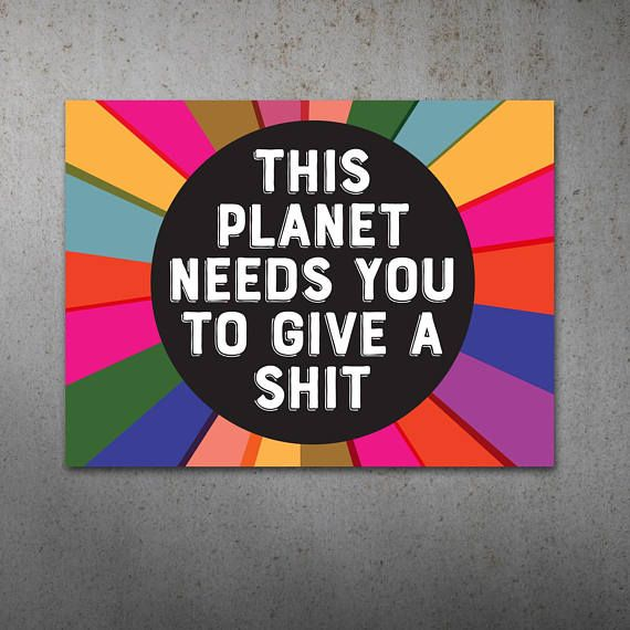 Give a Sh-t PRINTABLE Protest Poster | Climate Change, Environment Protest Sign